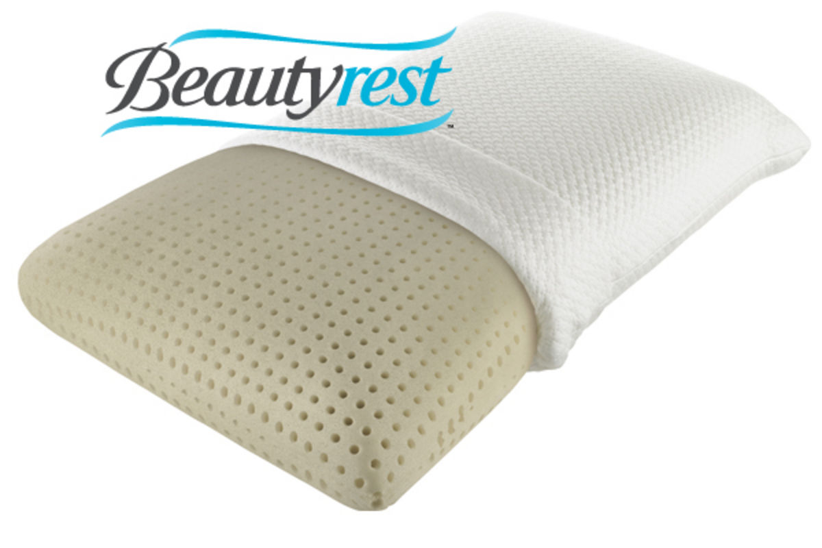 Beautyrest® TruEnergy™ Plush Memory Foam Pillow at Gardner White